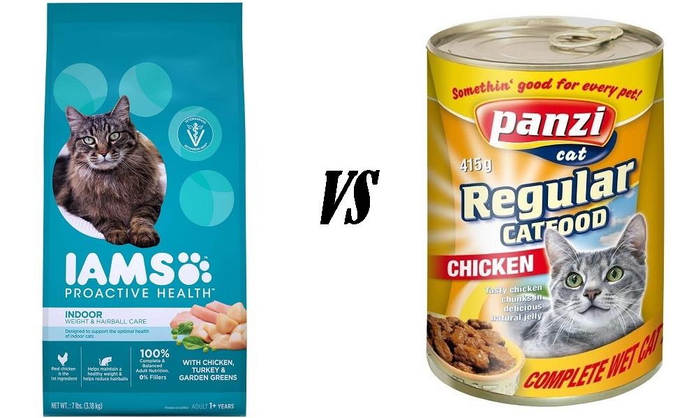 Indoor Cat Food vs Regular