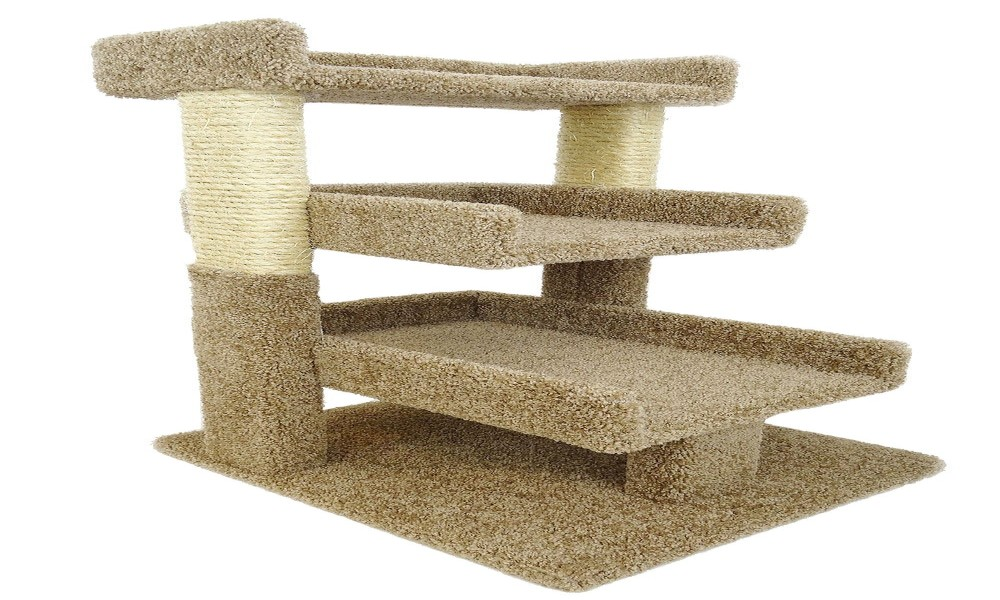 Cat Tree for Older Cats