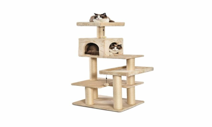Armarkat Cat Tree Reviews