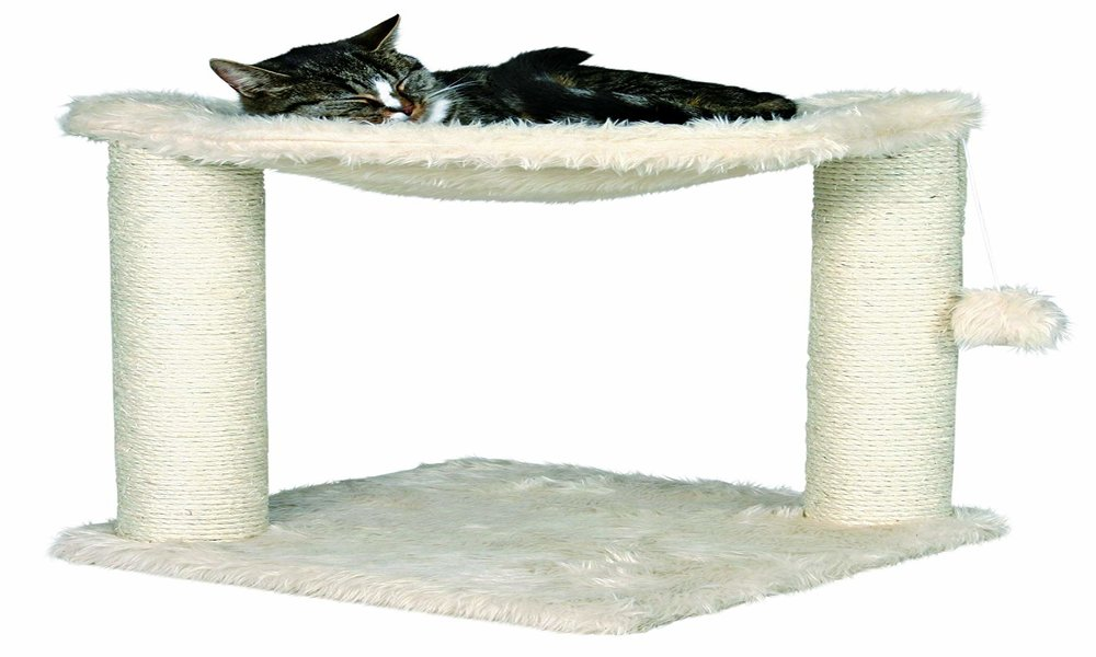 Best Cat Tree Reviews