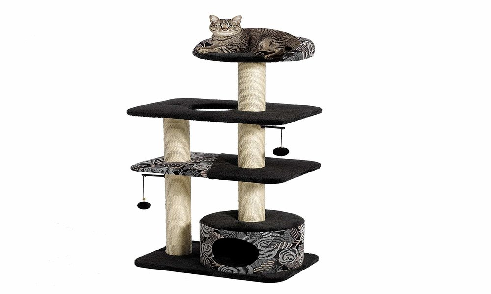 Best Cat Tree for Two Cats